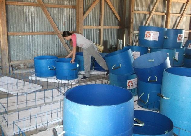 Contenedores para reciclaje de basura en Pueblo Rincón | Foto: Paula González