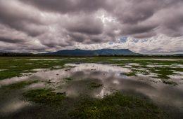 Cerro Tres Kandú. Departamento de Guairá. Paraguay. | Foto: cortesía de Rolando Isasi