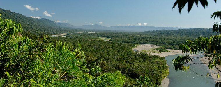 Parque nacional y reserva de biósfera del Manu, Perú | Imagen: Flickr (CC BY 2.0)