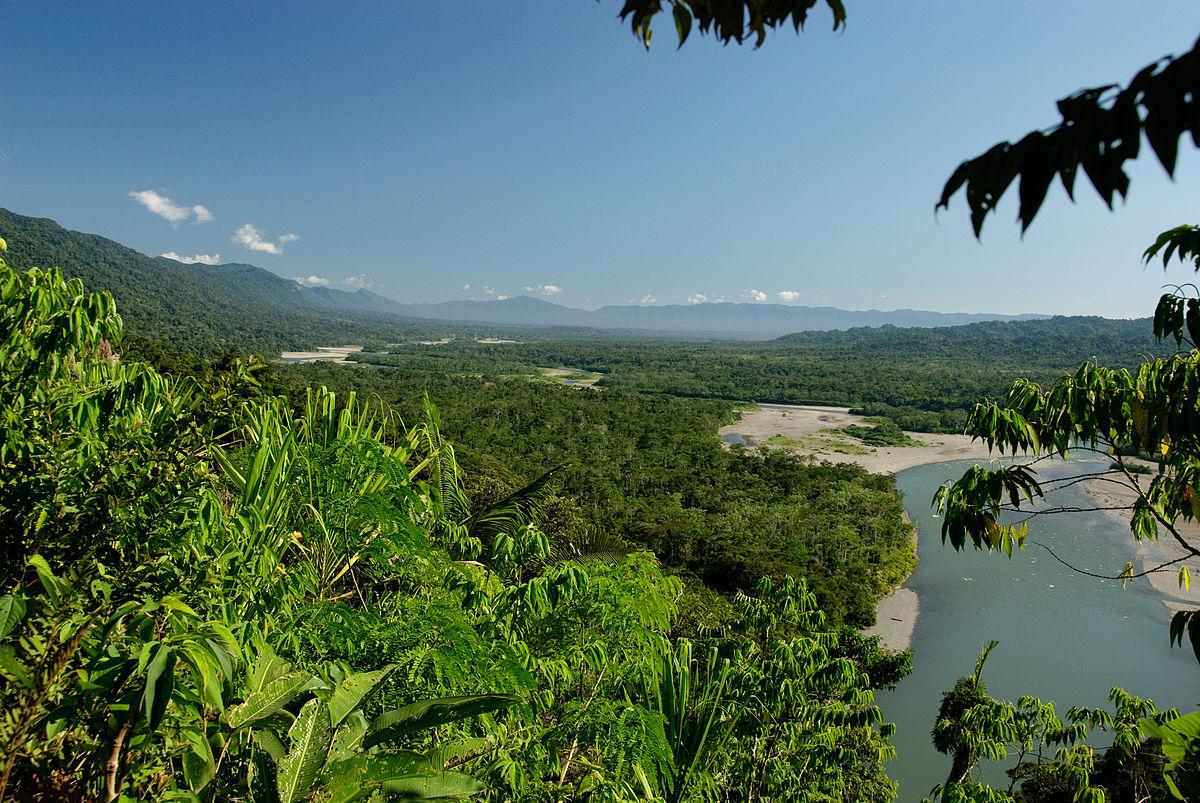 Parque nacional y reserva de biósfera del Manu, Perú   Imagen: Flickr (CC BY 2.0)