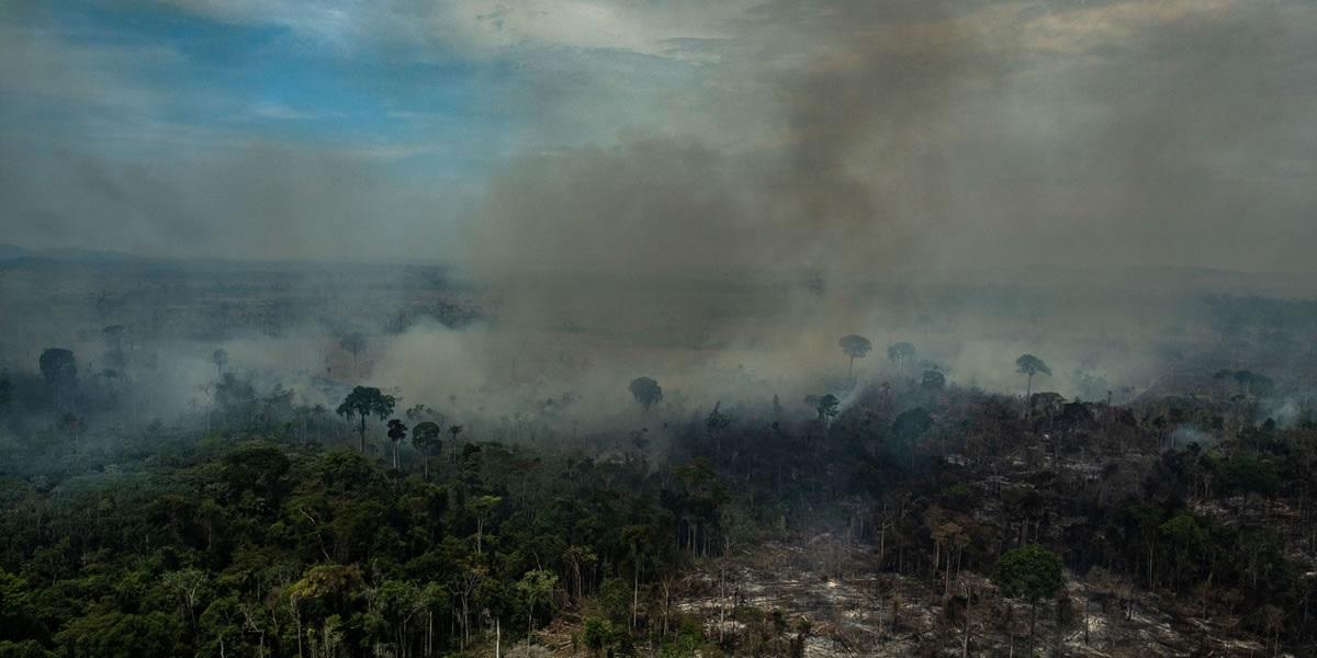 Foto: Victor Moriyama/Greenpeace/24 de agosto de 2019