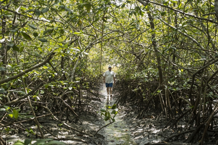 La zona sur de Costa Rica, en la costa pacífica, ha desarrollado un modelo de turismo comunitario, rural y selectivo, con importantes encadenamientos y empresas pequeñas que necesitan un respiro financiero ante la coyuntura actual | Foto: Eyleen Vargas, con derecho de uso de Punto y Aparte.